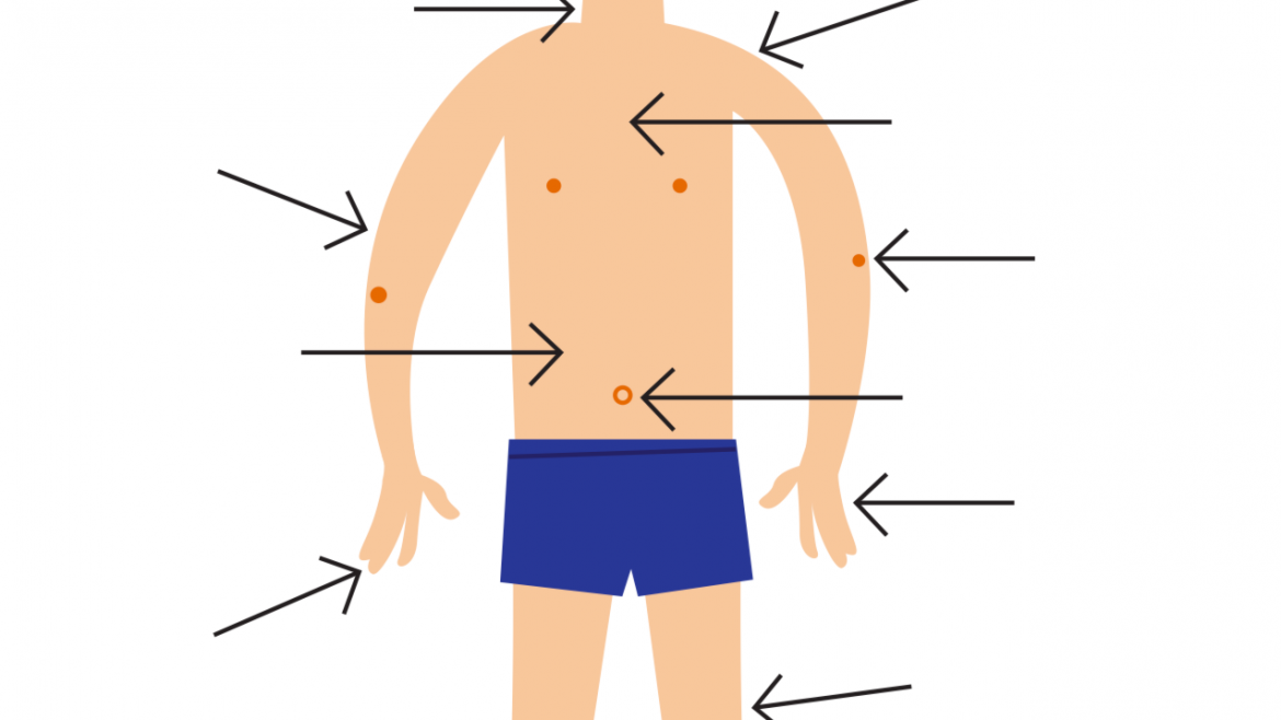 How to say body parts in Italian & body idioms
